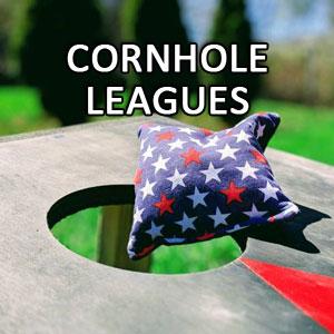 cornhole bag and board